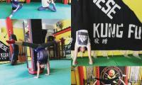 enorgani-gym-5.jpg